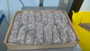 Frozen Minced Green Tripe 32x500g bags/blocks 16KG for dogs BARF / RAW
