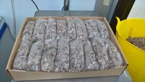 Frozen Minced Green Tripe 40x500g bags/blocks 20KG for dogs BARF / RAW